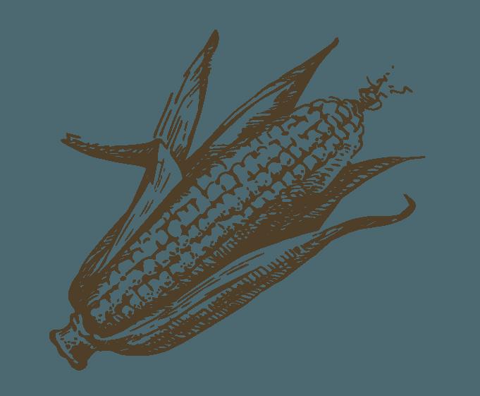 Marchand : Fréchette Fruits et Légumes