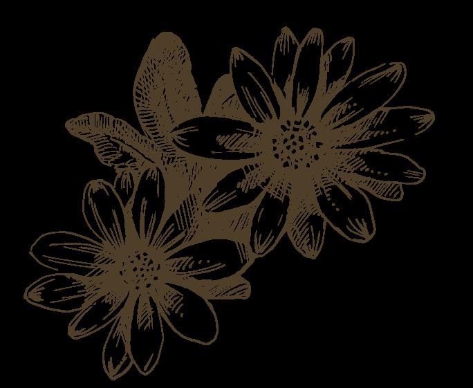 Marchand : Scardera Fleurs et Jardins
