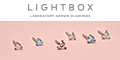 Lightbox Jewelry Coupons