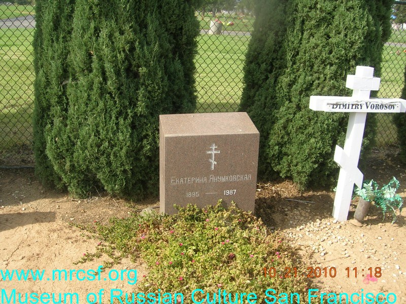 Grave/tombstone of IAKUSHOVSKY Екатерина