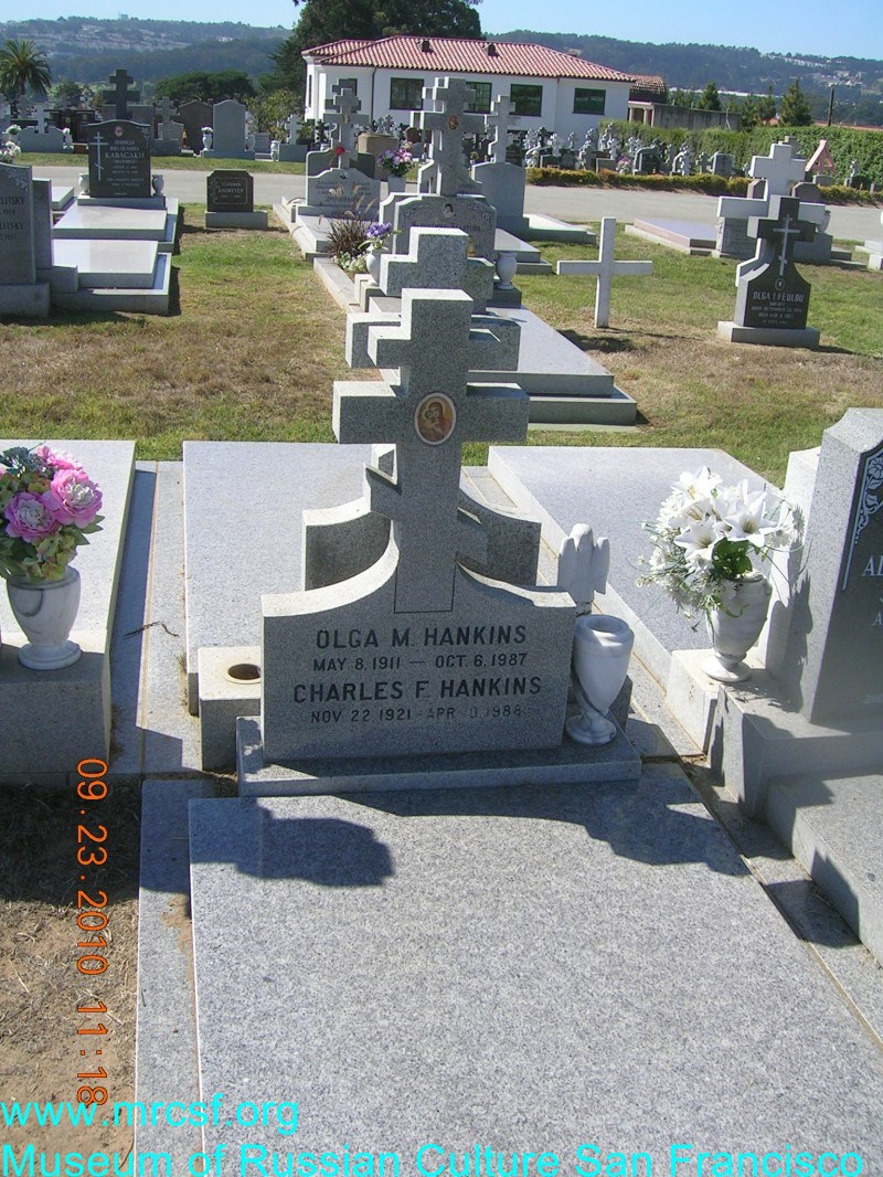 Grave/tombstone of HANKINS Charles M.