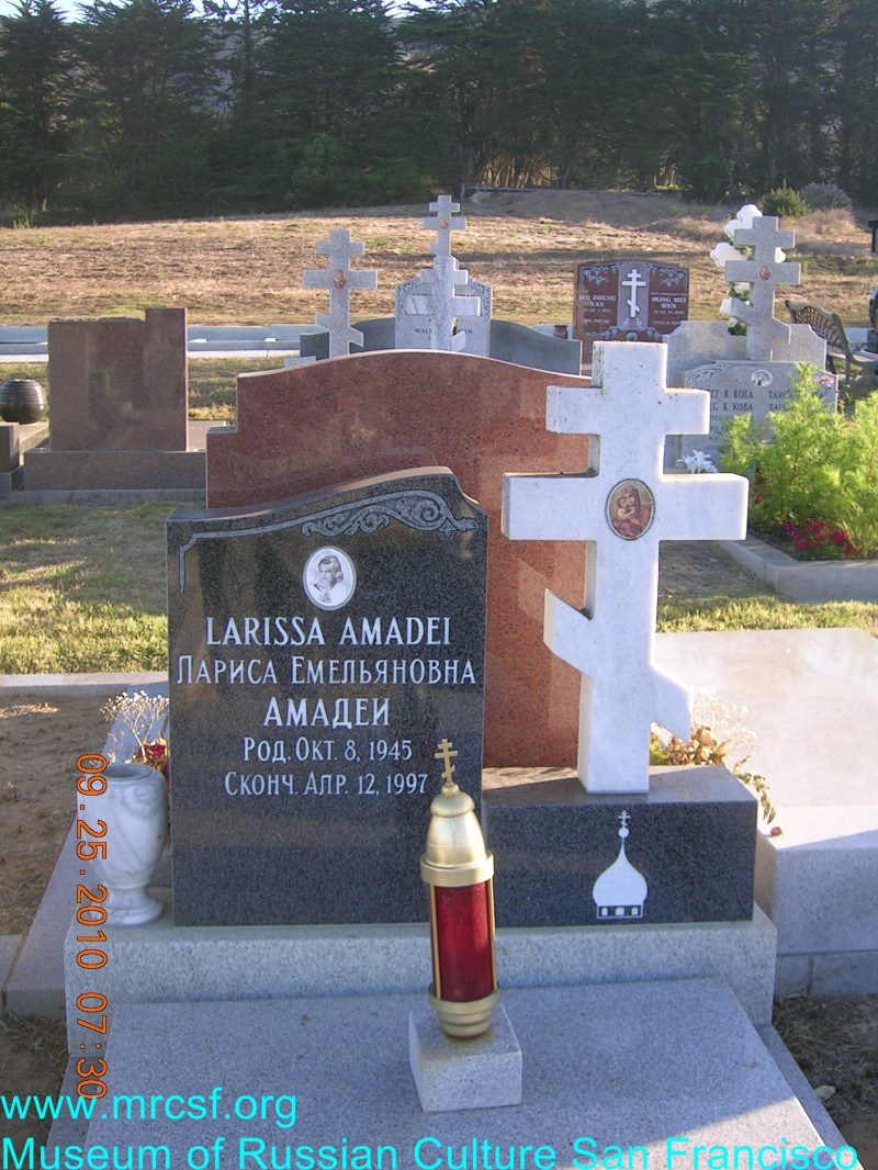 Могила/надгробие АМАДЕИ Лариса Емельяновна