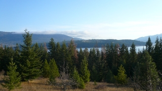 Main Photo: 422 Richview Road in Tappen / Sunny Brae: Shuswap Land Only for sale (Sunny Brae / Tappen)  : MLS® # 9181758