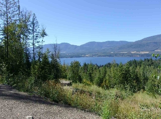 Main Photo: Lot 1 Eagle Bay Road in : Eagle Bay Other for sale (Shuswap)  : MLS® # 10099262