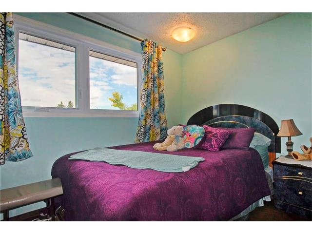 Photo 19: 545 RUNDLEVILLE Place NE in Calgary: Rundle House for sale : MLS® # C4079787