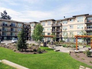 "Main Photo: 316 2565 CAMPBELL Avenue in Abbotsford: Central Abbotsford Condo for sale in ""ABACUS UPTOWN"" : MLS®# R2288822"