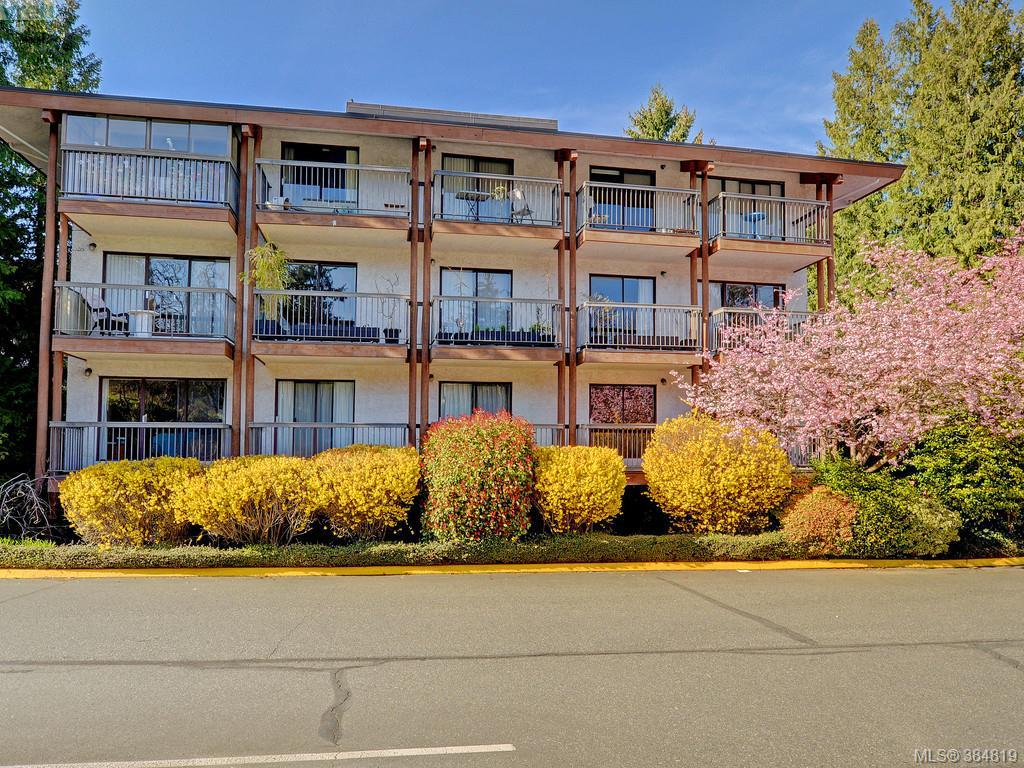 Main Photo: 415 1005 McKenzie Avenue in VICTORIA: SE Quadra Condo Apartment for sale (Saanich East)  : MLS® # 384819