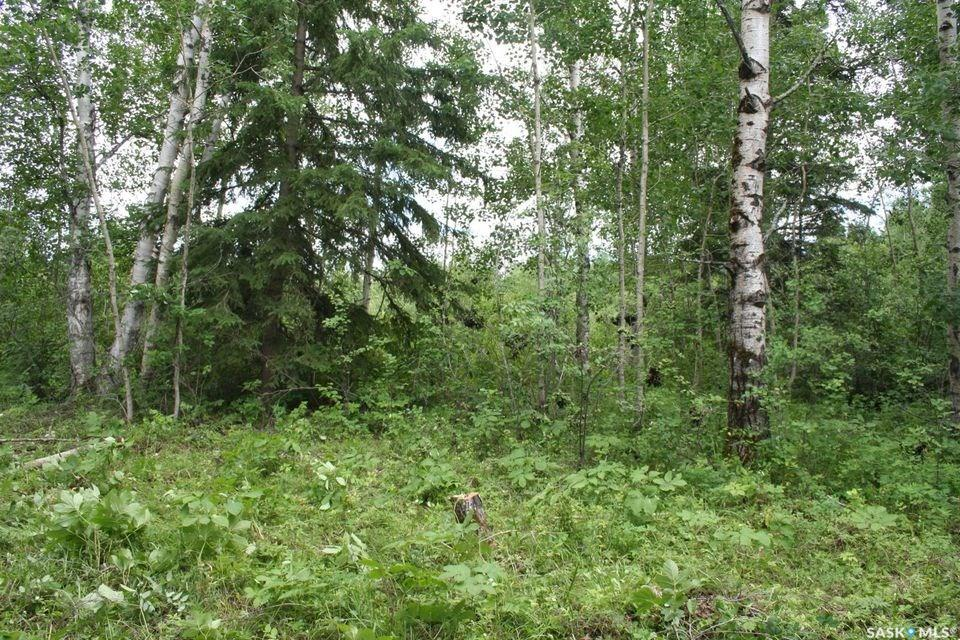 Main Photo: Lot 8 Bl 5 Rural Address in Cowan Lake: Lot/Land for sale : MLS®# SK746461