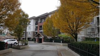 "Main Photo: B205 8929 202 Street in Langley: Walnut Grove Condo for sale in ""THE GROVE"" : MLS® # R2222648"