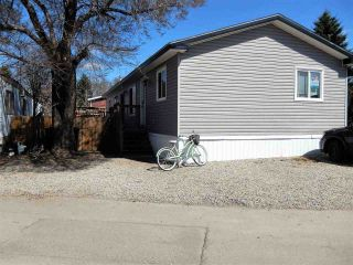 Main Photo: 211 305 CALAHOO Road: Spruce Grove Mobile for sale : MLS®# E4103100