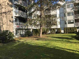 Main Photo: 203 9620 MANCHESTER Drive in Burnaby: Cariboo Condo for sale (Burnaby North)  : MLS® # R2228126