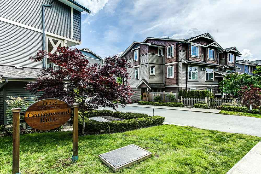 "Main Photo: 77 11252 COTTONWOOD Drive in Maple Ridge: Cottonwood MR Townhouse for sale in ""COTTONWOOD RIDGE"" : MLS®# R2062790"