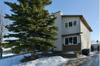 Main Photo: 139 CASTLEGLEN Road NE in Calgary: Castleridge House for sale : MLS®# C4170209