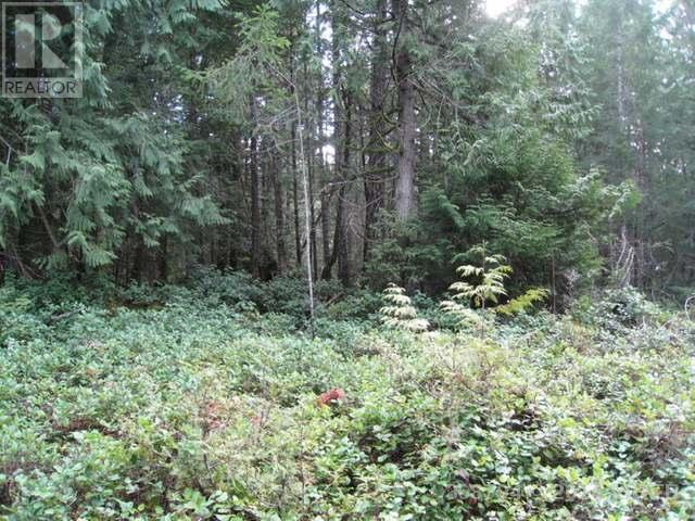 Photo 5: 362 Mill Road in Thetis Island: Land for sale : MLS® # 368794
