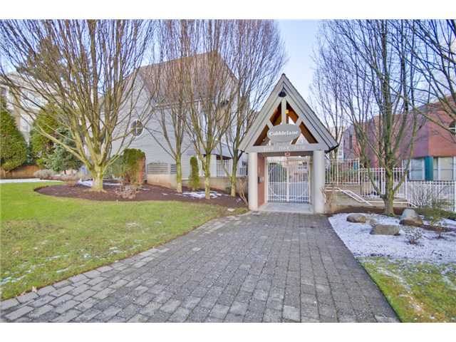Main Photo: 207 7168 OAK Street in Vancouver: South Cambie Condo for sale (Vancouver West)  : MLS® # V926190