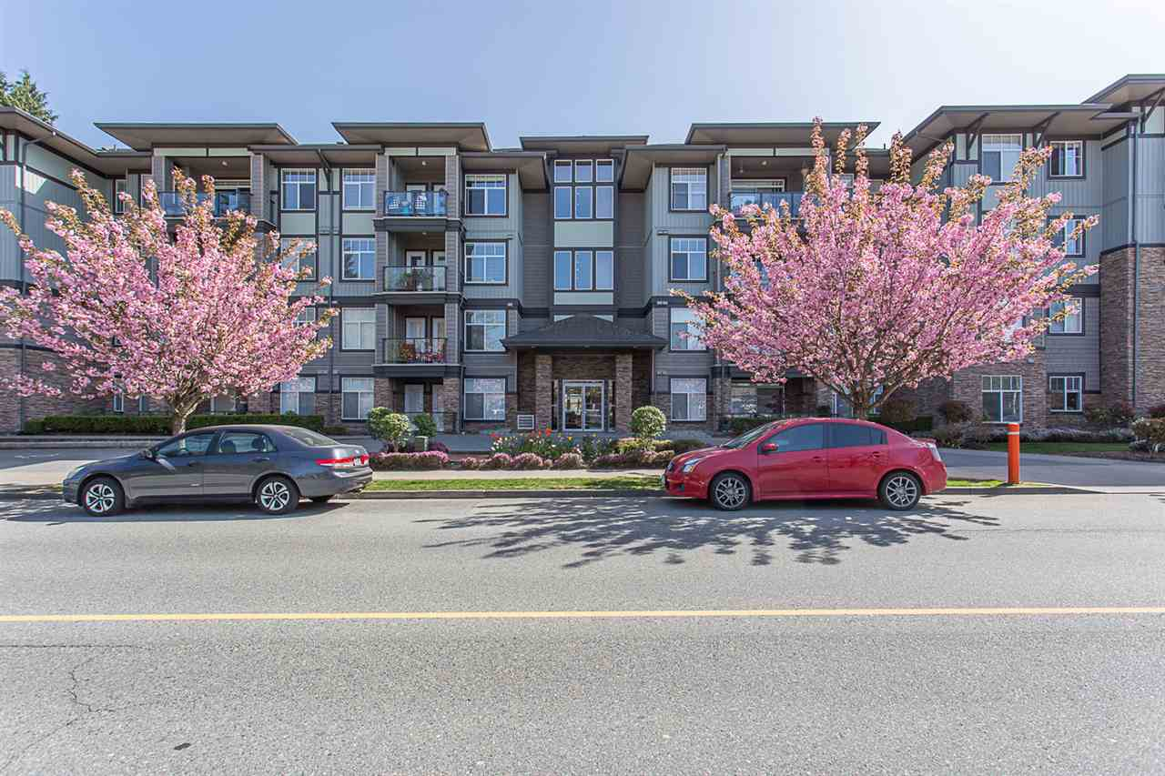 "Main Photo: 311 33338 MAYFAIR Avenue in Abbotsford: Central Abbotsford Condo for sale in ""The Sterling"" : MLS®# R2262243"