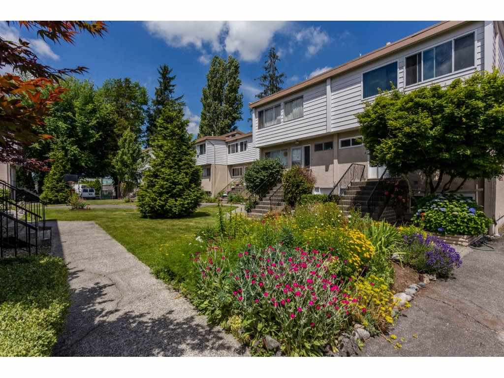 "Main Photo: 11 20601 EASTLEIGH Crescent in Langley: Langley City Townhouse for sale in ""EASTLEIGH GARDENS"" : MLS(r) # R2182326"