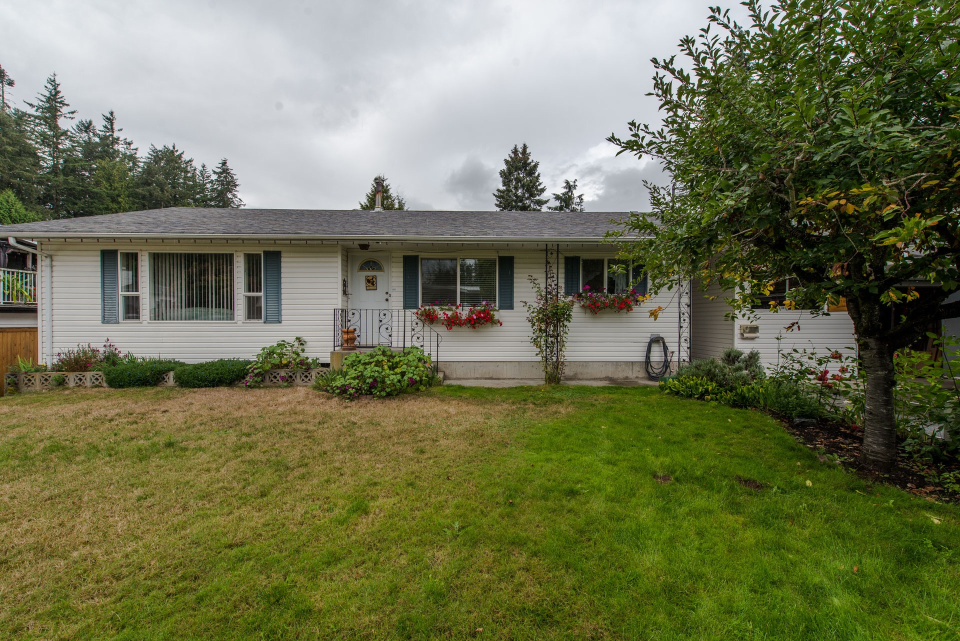 "Main Photo: 33329 RAINBOW Avenue in Abbotsford: Central Abbotsford House for sale in ""Hoon Park"" : MLS®# R2303752"