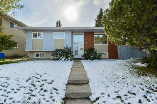 Main Photo:  in Edmonton: Zone 22 House for sale : MLS®# E4132515