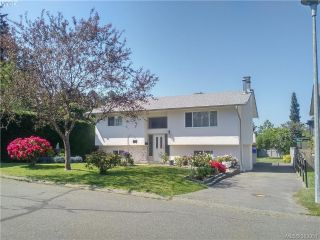 Main Photo: 524 Meredith Crescent in VICTORIA: SW Tillicum Single Family Detached for sale (Saanich West)  : MLS®# 393951