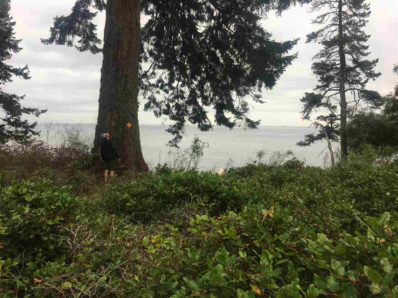 FEATURED LISTING: 1656 STICKS ALLISON Road Galiano Island