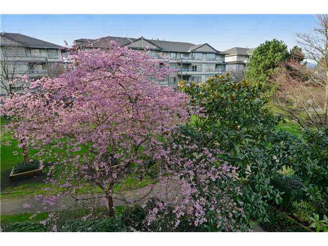 FEATURED LISTING: 309 - 3455 ASCOT Place Vancouver
