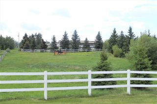 Main Photo: 9 475013 Rge Rd 243: Rural Wetaskiwin County House for sale : MLS®# E4113850