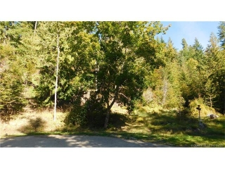 Main Photo: 8 Seymour Road in Celista: Vacant Land for sale : MLS® # 10143789