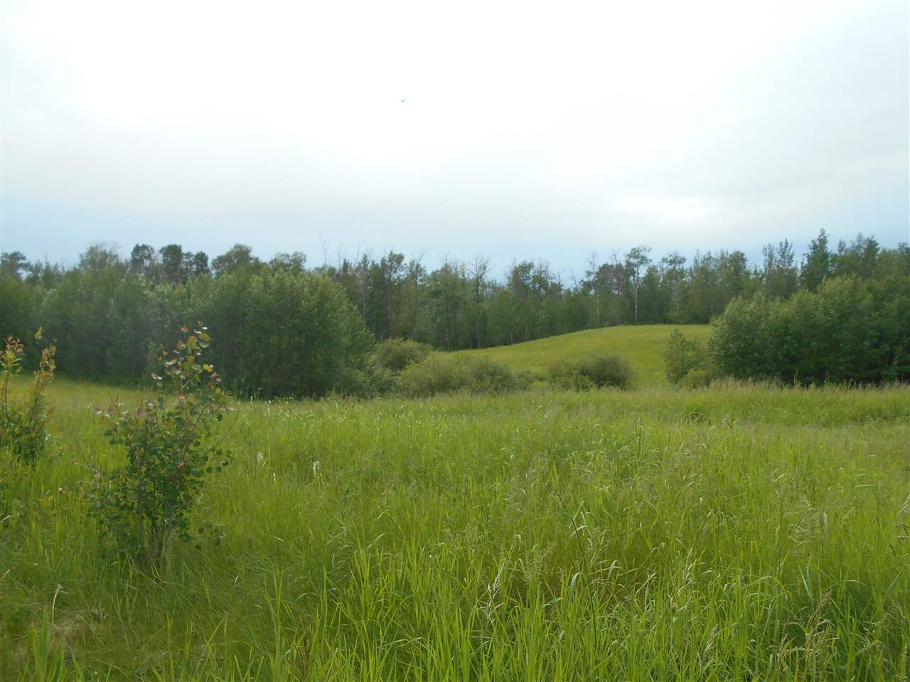 FEATURED LISTING: RR. 70 Twp. Rd. 502 Rural Brazeau County