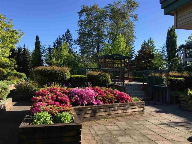 Photo 3: 19528 Fraser Highway in Surrey: Cloverdale Condo for sale : MLS® # R2098502