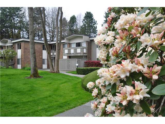 FEATURED LISTING: 6 - 5565 OAK Street Vancouver