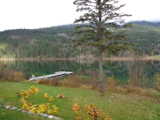 Main Photo: 1860 Agate Bay Road: Barriere House with Acreage for sale (North East)  : MLS® # 131531