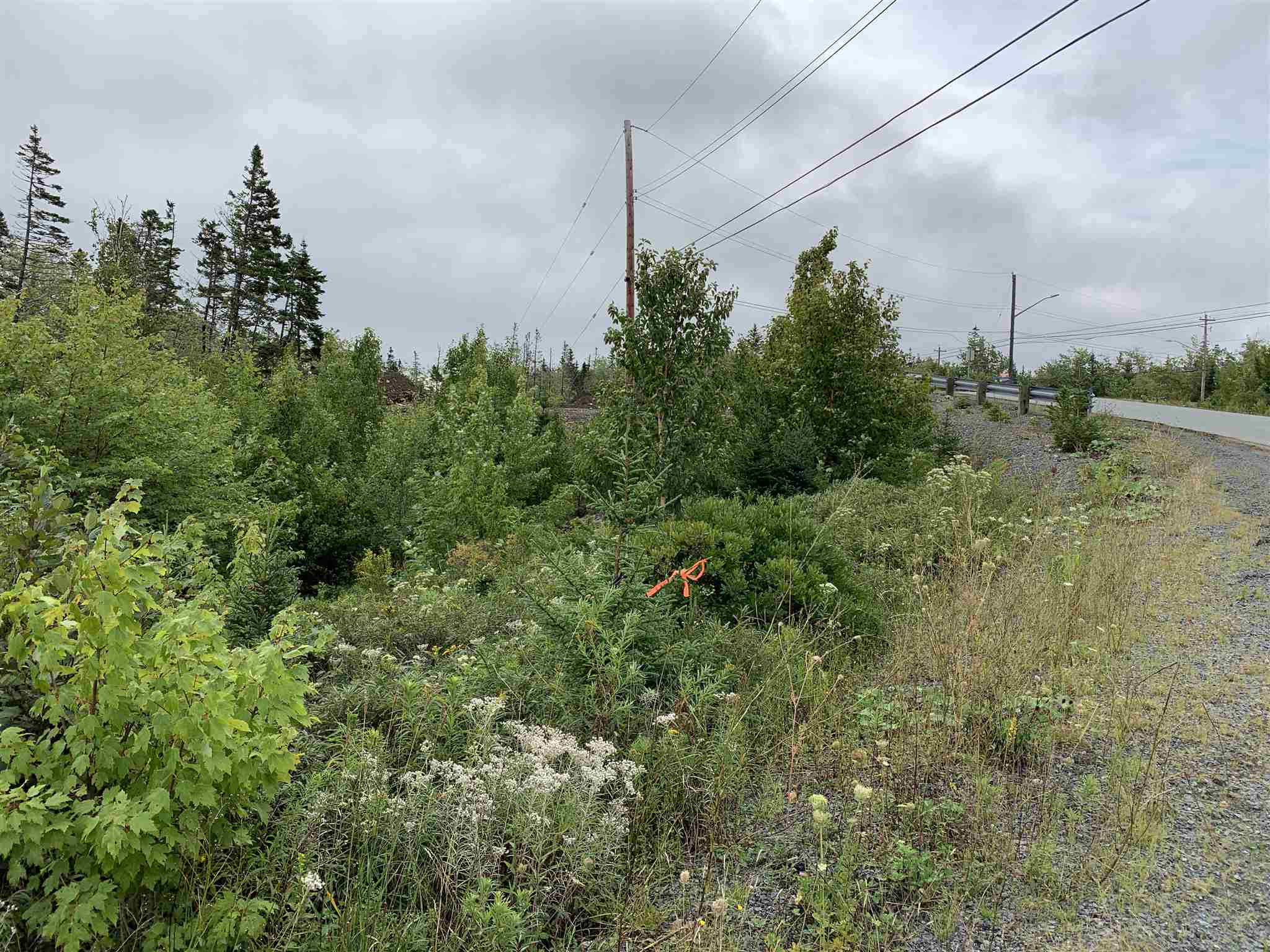 FEATURED LISTING: Lot 40A - 15 Kittiwake Ridge Halibut Bay