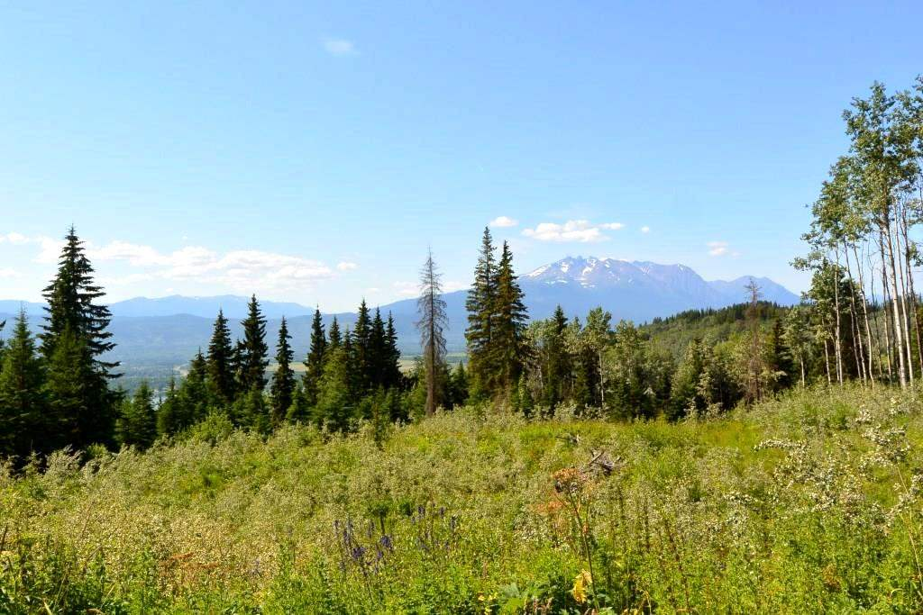 FEATURED LISTING: LOT - 1 HISLOP Road Smithers