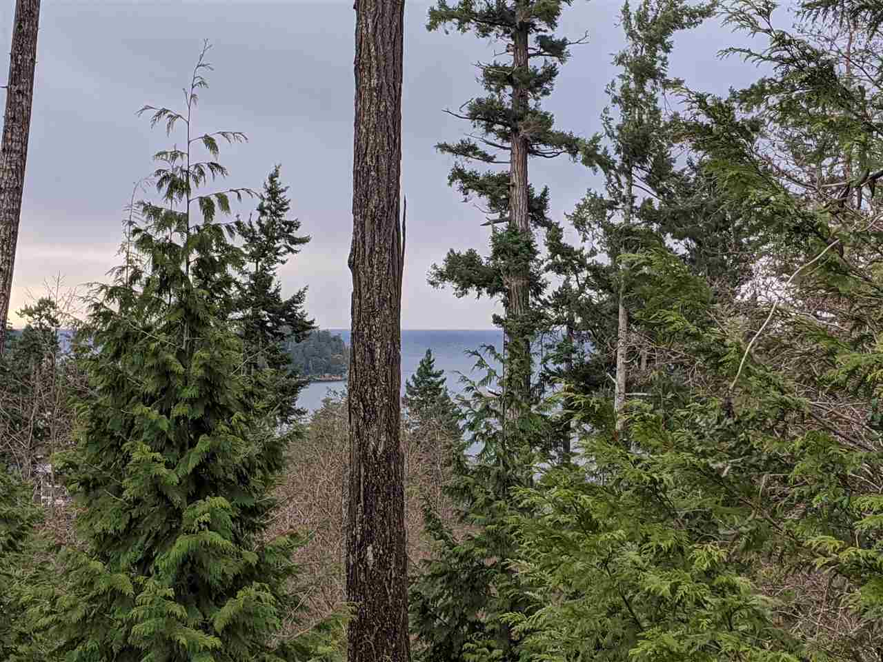 FEATURED LISTING: LOT 71 ALLEN CRESCENT Pender Harbour