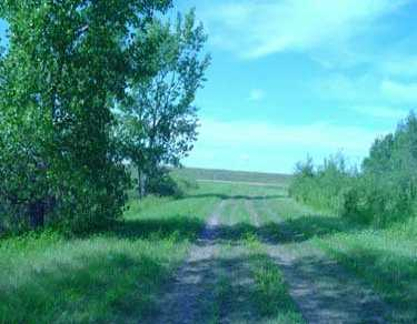 Main Photo:  in Springfield: Anola / Dugald / Hazelridge / Oakbank / Vivian Vacant Land for sale (Winnipeg area)  : MLS®# 2414984