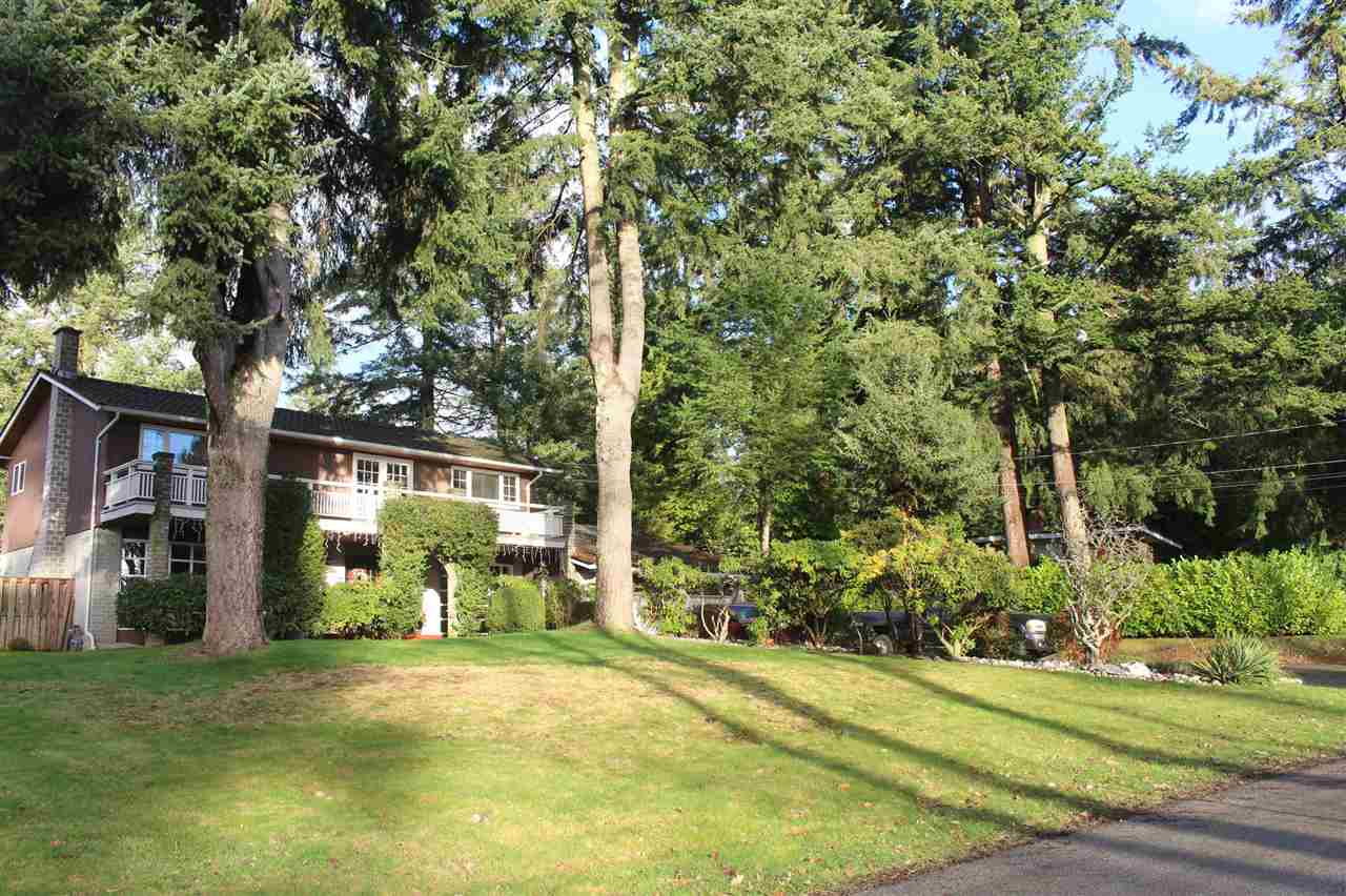 FEATURED LISTING: 13719 56A Avenue Surrey