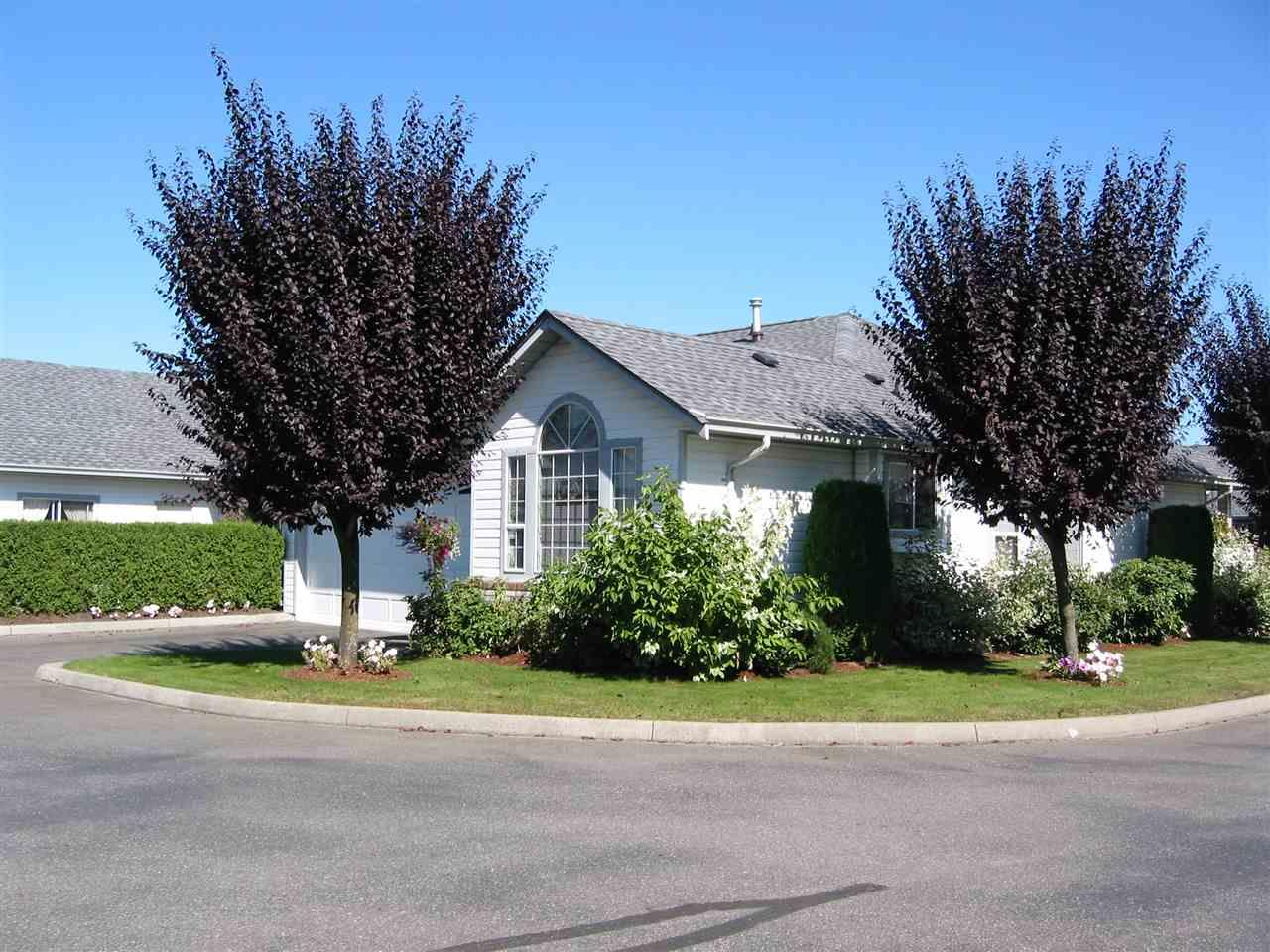 FEATURED LISTING: 31 - 33922 KING ROAD Abbotsford