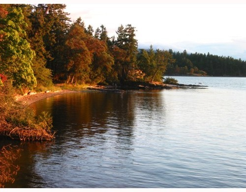 Photo 6: 20 FOSTER POINT Road in Thetis Island: Beach Home for sale : MLS® # V766772