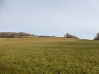 Main Photo: Twp 492 RR 43: Rural Brazeau County Rural Land/Vacant Lot for sale : MLS® # E4086132
