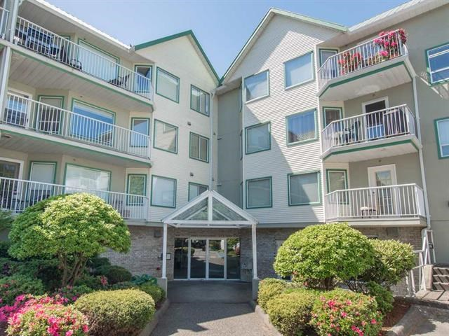 "Main Photo: 217 19236 FORD Road in Pitt Meadows: Central Meadows Condo for sale in ""EMERALD PARK"" : MLS®# R2072253"