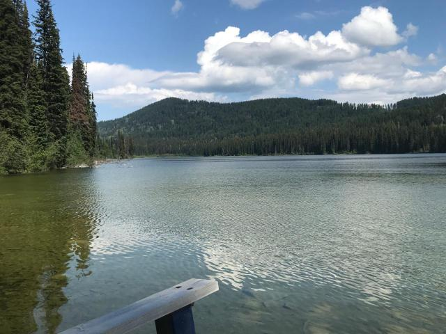 FEATURED LISTING: 4373 HYAS LAKE FS ROAD