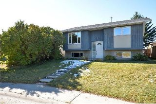 Main Photo: 39 DOVELY Way SE in Calgary: Dover House for sale : MLS® # C4140960