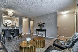 "Main Photo: 21462 MAYO Place in Maple Ridge: West Central Townhouse for sale in ""MAYO PLACE"" : MLS® # R2206625"