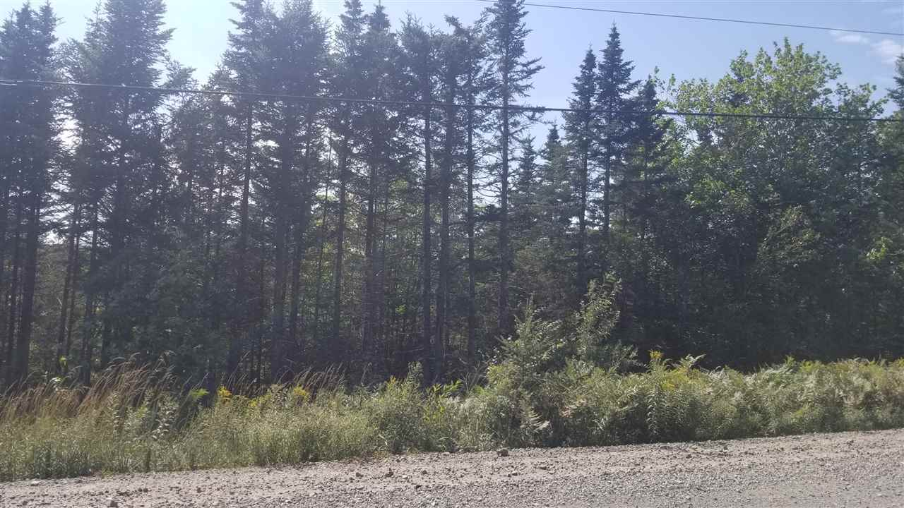 FEATURED LISTING: Lot 1 Moose River Road Lindsay Lake