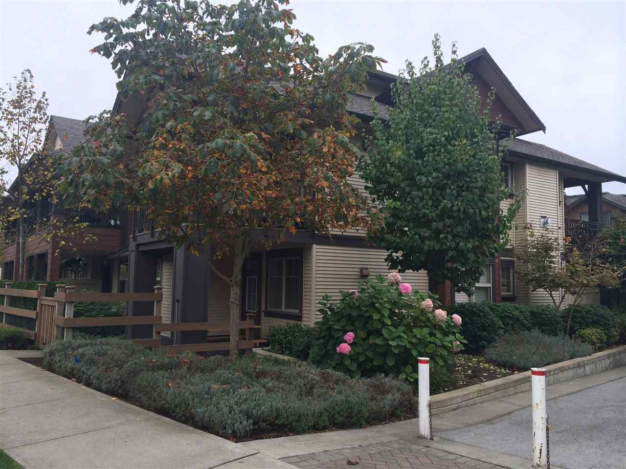 "Main Photo: 41 19478 65 Avenue in Surrey: Clayton Townhouse for sale in ""Sunset Grove"" (Cloverdale)  : MLS®# R2142025"