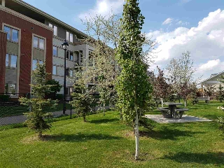 Main Photo: 312 4450 McCrae Avenue in Edmonton: Zone 27 Condo for sale : MLS® # E4075354