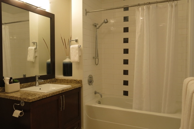 Large contemporary bathroom with large soaker tub.