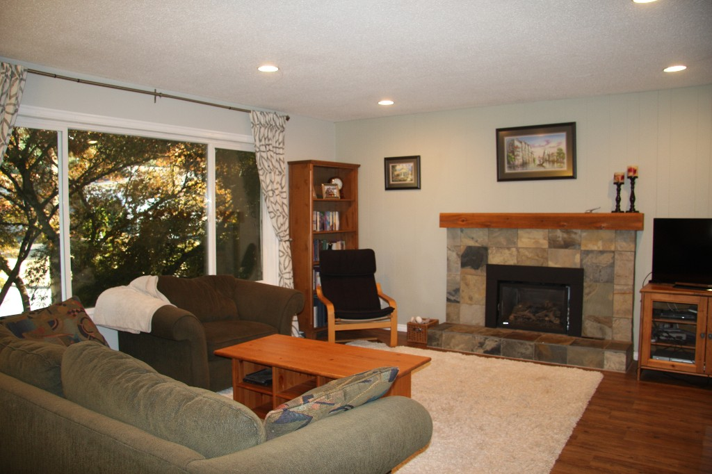 living room with newer cozy gas fireplace