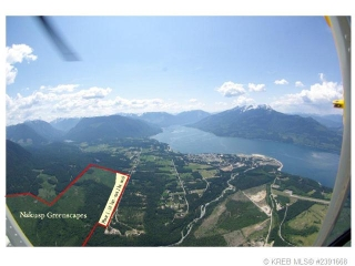 Main Photo:  in Naksup: Home for sale (Nakusp)  : MLS® # 2391668